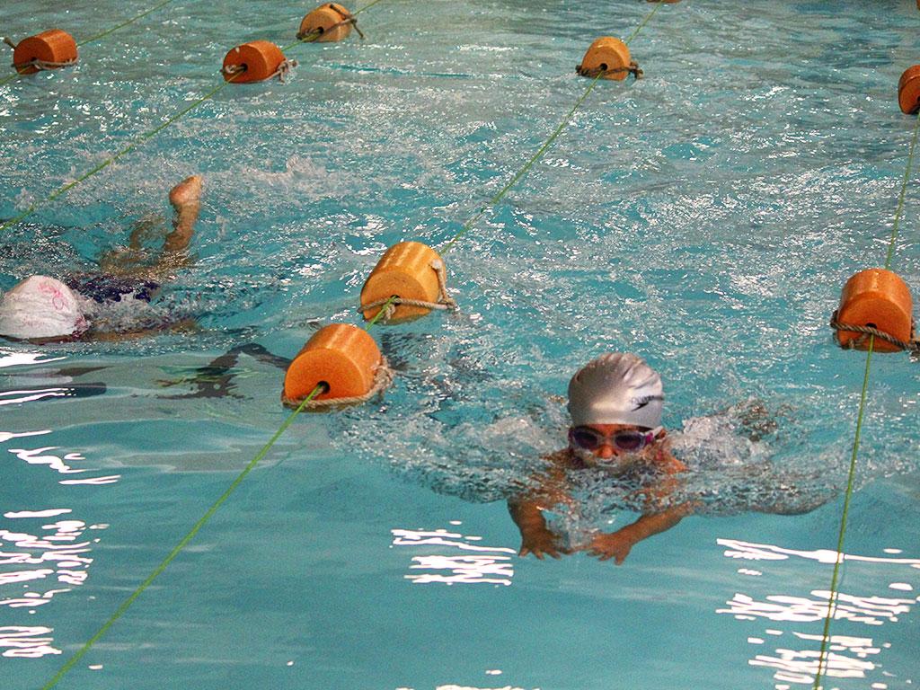 Swimming activity at JBCN