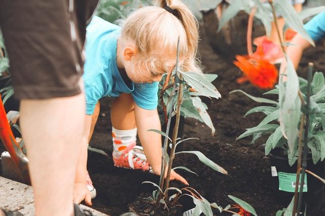 Help Your Child Find Volunteer Opportunities